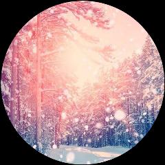 зима forest лес круг фон freetoedit
