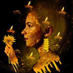freetoedit ircbeehivebuilding beehivebuilding bees honeycomb