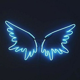 1000+ Awesome neon Images on PicsArt