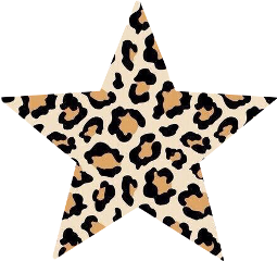vsco star stars leopard freetoedit