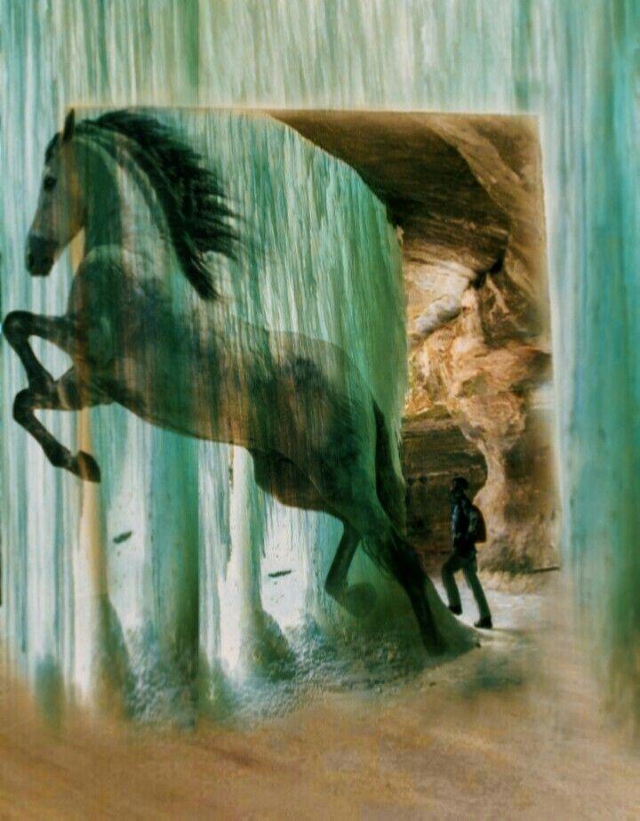 #freetoedit #doubleexposures #picsarteffects #horse #myedit