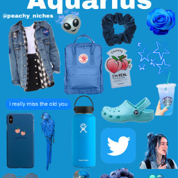 niche nichememes zodiac zodiacsigns aquarius freetoedit