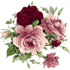 flowers flowerssticker overlays aestethic stickers freetoedit