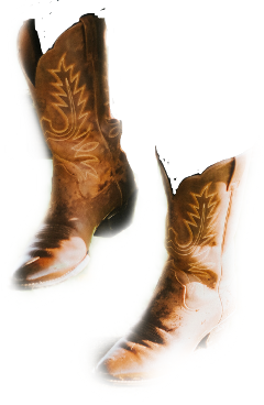 sccowboyboots cowboyboots freetoedit