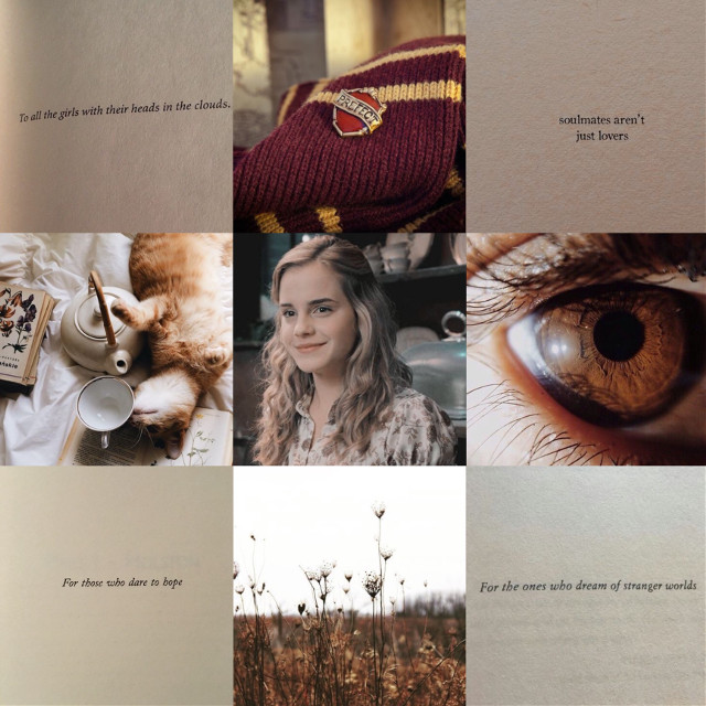 So I literally just liked SOOO many Harry Potter edits because @the-seventh-weasley has made sure those edits pop up, because their's is so good!  Thanks so much for that!  😂💛🌼#hermionegranger #gryffindor #harrypotter #hermionegrangeraesthetic #soft #pale #inspiration #moodboard #aesthetic #freetoedit #remixit