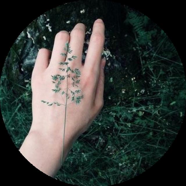 #slytherin #slytherinaesthetic #slytherinedit #slytherinpride #slytherinhouse #green #greenbackground #greenaesthetic #background #slytherinbackground
