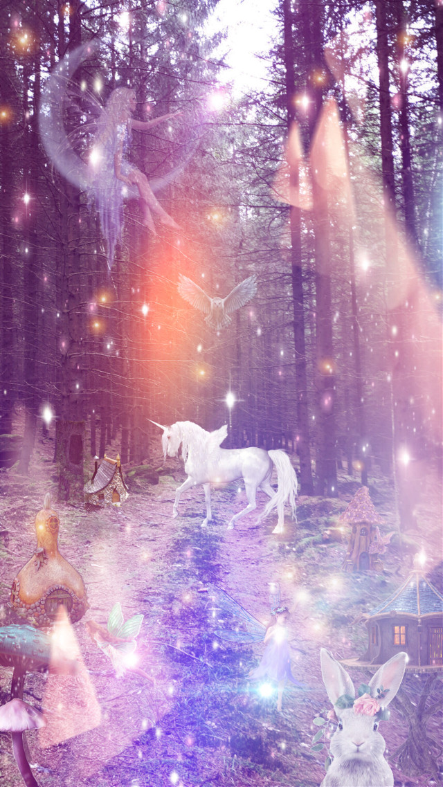 """""""A Walk Through the Forest"""" 🦄