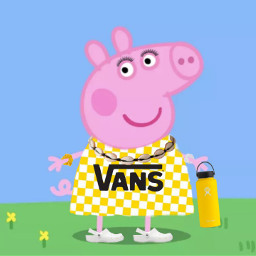 peppapigmemes vsco vans yellow scrunchies freetoedit