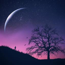 treeoflife silhouette santafe success run freetoedit