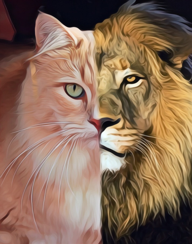 #freetoedit #lion #split #tough #oilpaintingeffect