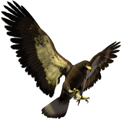 freetoedit eagle big bird