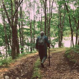 walking stroll forest ballad intheforest freetoedit