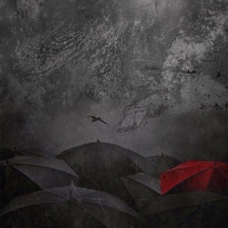 standout beyourself umbrellas clouds