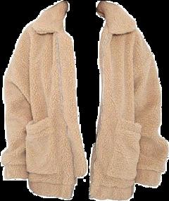 jackets jacket coat coats winter freetoedit