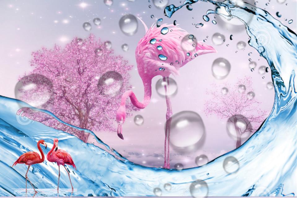 #flamingo paradise #freetoedit