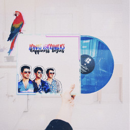 ircvinyl vinyl jonasbrothers challenge freetoedit