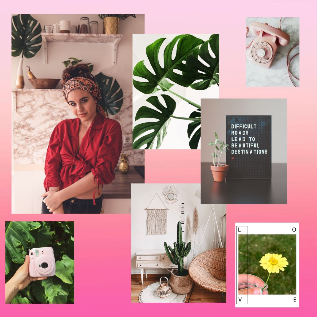 #freetoedit #ircstylish #stylish #pink #edit #boho #quote #fern #vintage #camera #flower #daisy #leaf #nature #marble #cactus #red #ombre #kitchen #room