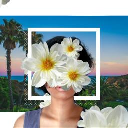 freetoedit flower antiselfie