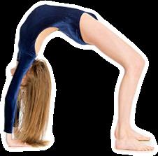 #gymnast #gymnastics #bridge #backbend #freetoedit