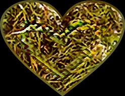 #massage #snakeoil #heartofgrass