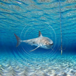 freetoedit fishingweek sharks fishing watereffect