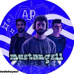 mustangs11