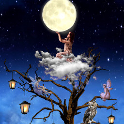 freetoedit moon owl lantern dreams