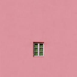 pink wall window windows freetoedit