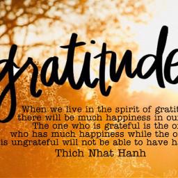 thay thaysaid gratitude thichnhathanhquotecollective thichnhathanh