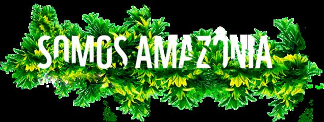 amazonia prayforamazon amazon prayforamazonia freetoedit