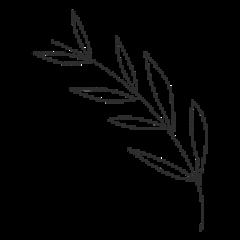 doodle plants plant flower freetoedit