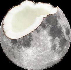 moon coconut freetoedit