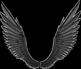 wings grey fly freetoedit