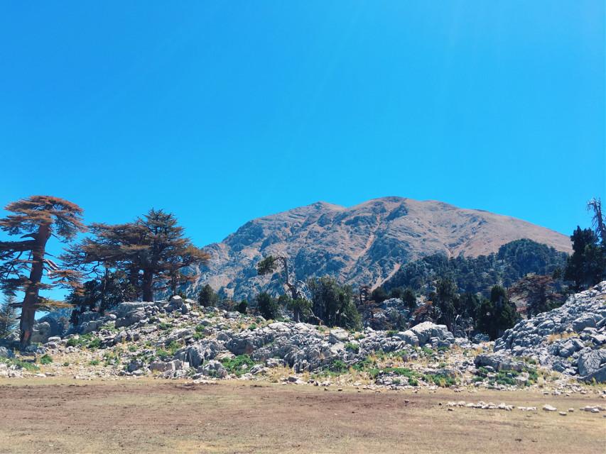 #photography #nature #mountains #trees #turkey #kemer #travel #freetoedit