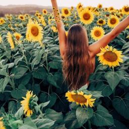 freetoedit vsco vscocam_app vscofilter sunshine srcsunflowerselfie
