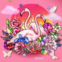 flamingo pink love