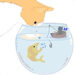 cat cats fish goldfish fishing dcfishingweek
