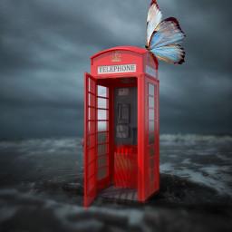 freetoedit editedwithpicsart madewithpicsart butterfly colorsplash