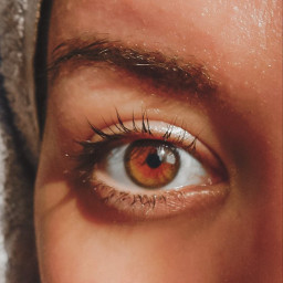 myphotography eyes eye eyecloseup myeyes freetoedit