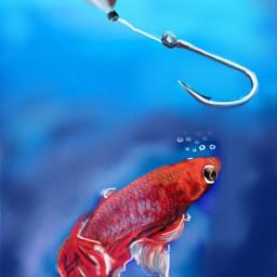 dcfishingweek