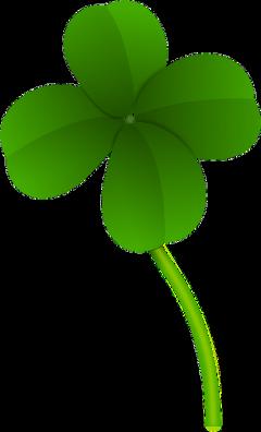 clover fourleafclover irish green lucky freetoedit