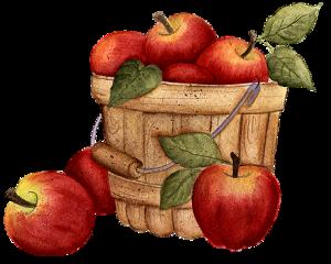 food fruit basket apples freetoedit