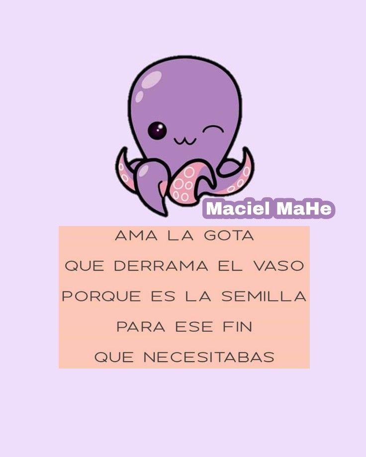 #macielmahe