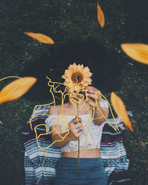 #sketch#sunflower#picsart#picsartedit#flowers#picsarteffects