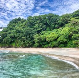ocean oceanlife forest interesting nature