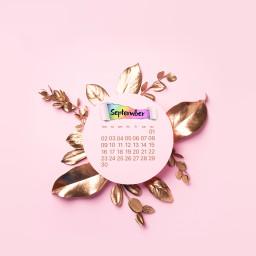 freetoedit calendar september backtoschool backtoschool2019