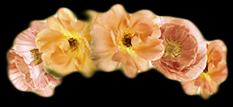 crown flower flowers gold pretty freetoedit