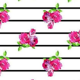 freetoedit wallpaper stripes flowers