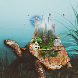 freetoedit twintowers indonesia picsart tortoise