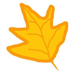 dcautumn autumn canada mapleleaves maple